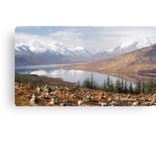 Highland View Canvas Print