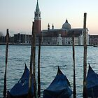 Sunset in Venice by suz01
