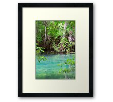 Through the Cypress Trees Framed Print