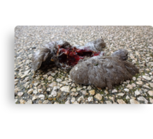 Flying Rat Bird Without Head n°5 Canvas Print