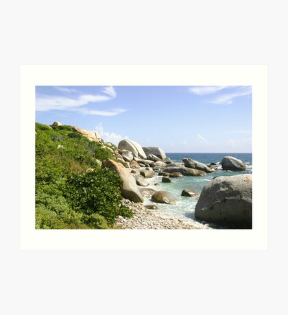 The Rocky Baths Beach Art Print