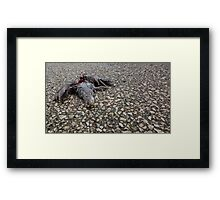 Flying Rat Bird Without Head n°6 Framed Print