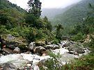 Thadokoshi Downstream by Richard Heath