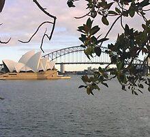 Sidney harbor by Paul Floyd