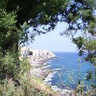 Mediterranean Coast of Sicily  by grammy