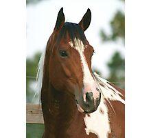 Bullseye Headshot Photographic Print