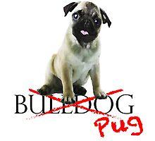 It's a Bulldog, innit? Photographic Print