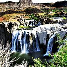 Shoshone Falls  by Visual   Inspirations