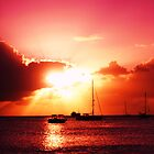 Sunset in Barbados by 1001pawprints