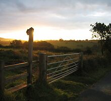 Dawn In Somerset by 1001pawprints