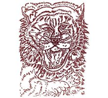 Tiger Sketch Photographic Print
