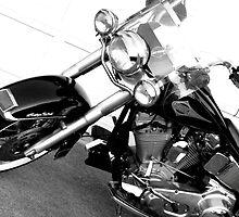 Harley by Dawn Palmerley