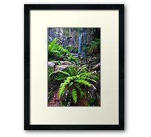 Fern & Falls Framed Print