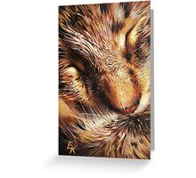 Sleeping tabby Greeting Card