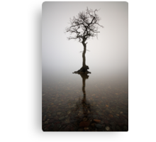 The Loch Lomond Tree Canvas Print