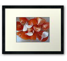 restaurant decor tomato onion Framed Print