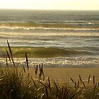 Pacific Beach North California by Sturmlechner