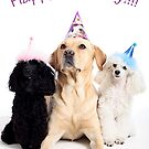 Happy Birthday!! by Cristina Rossi