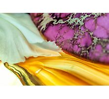 Love's Precious Touch Photographic Print