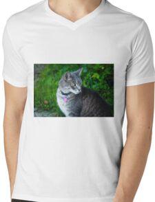 Bethesda cat Mens V-Neck T-Shirt