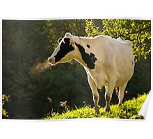 Good Morning, Cow Poster
