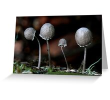 Fungi Season 24 Greeting Card