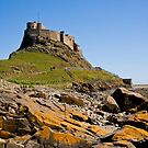 Lindisfarne Castle by dsargent