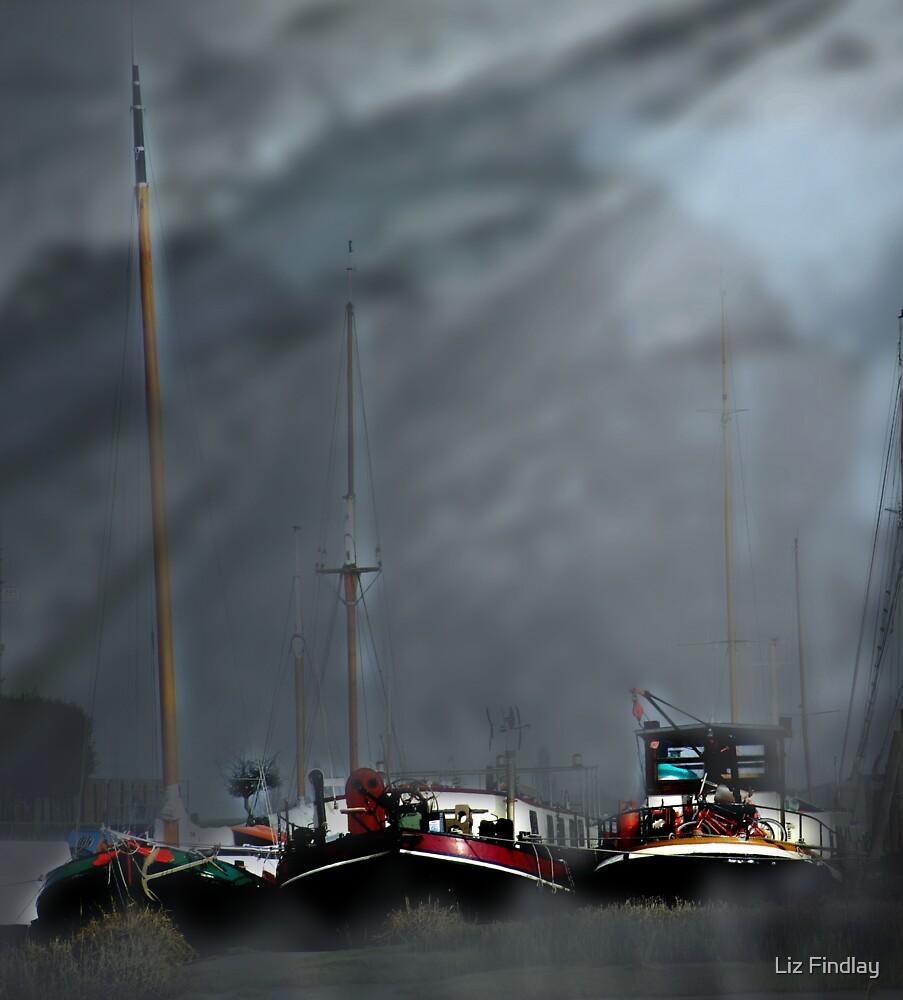 Thames barges at Faversham by Liz Findlay