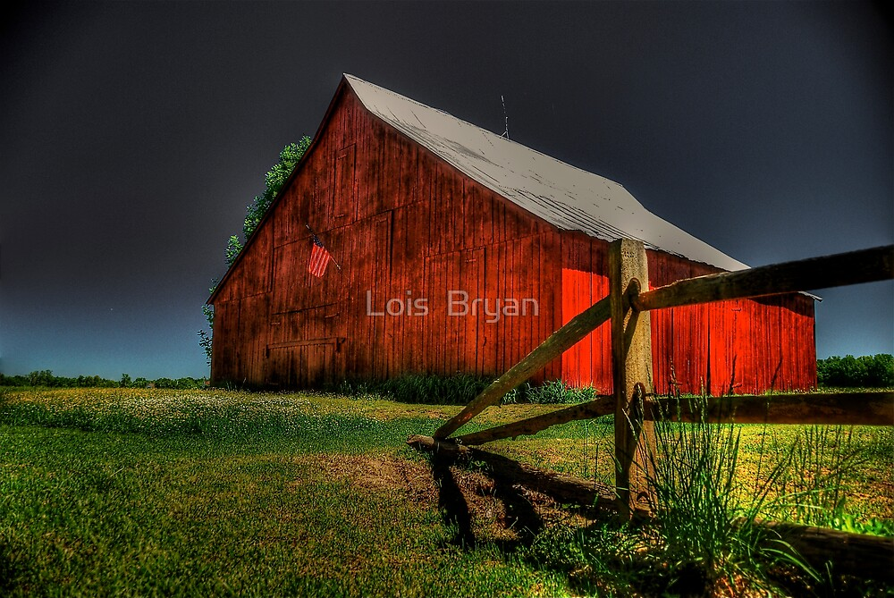 Old Glory by Lois  Bryan