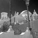 San Xavier del Bac Mission by Linda Gregory