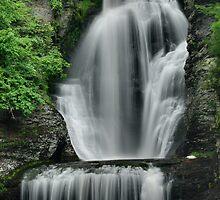 Dingman's Falls by Stephen Vecchiotti