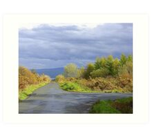 Rain Clouds And Gorse.................................Ireland Art Print