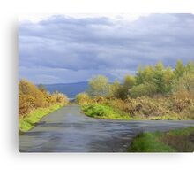 Rain Clouds And Gorse.................................Ireland Metal Print