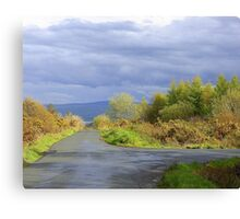 Rain Clouds And Gorse.................................Ireland Canvas Print
