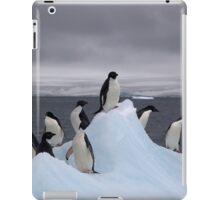 Beautiful Adelie Penguin iPad Case/Skin
