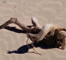Nude on the Beach by Hope Ledebur