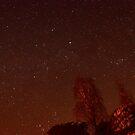 Night Skies by mikebov