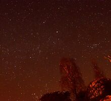 Night Skies by mikebov