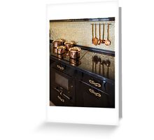 pan on an electric stove Greeting Card