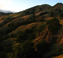 Sunol Backpack Camp, Sky Camp, Sunol Regional Wilderness, CA 2015 by J.D. Grubb