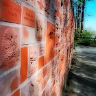 Zoo Wall by solareclips~Julie  Alexander