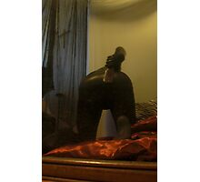 Zentai Through the Looking Glass 2 Photographic Print