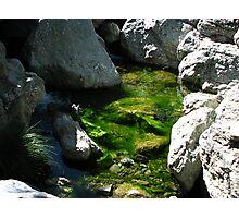 Living Water, Alameda Creek, Sunol Regional Wilderness, CA 2015 Photographic Print