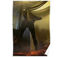 Zentai Through the Looking Glass 5 Poster