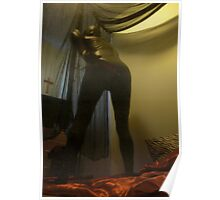 Zentai Through the Looking Glass 10 Poster