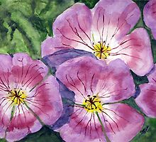 Purple Geraniums by Tina Messec by CoastalCarolina