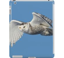Surveying her territory iPad Case/Skin