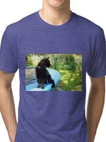 black outdoor cat  Tri-blend T-Shirt