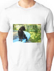 black outdoor cat  Unisex T-Shirt