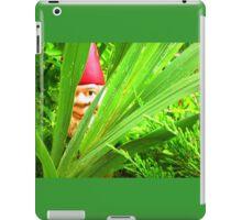 Gnomes Series iPad Case/Skin